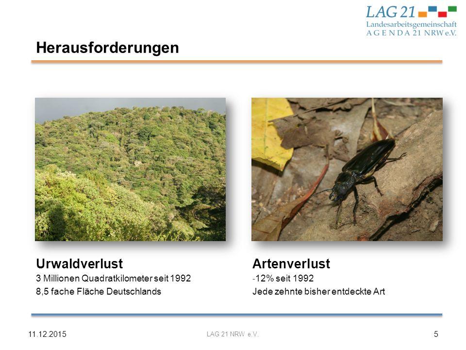 Herausforderungen Urwaldverlust Artenverlust