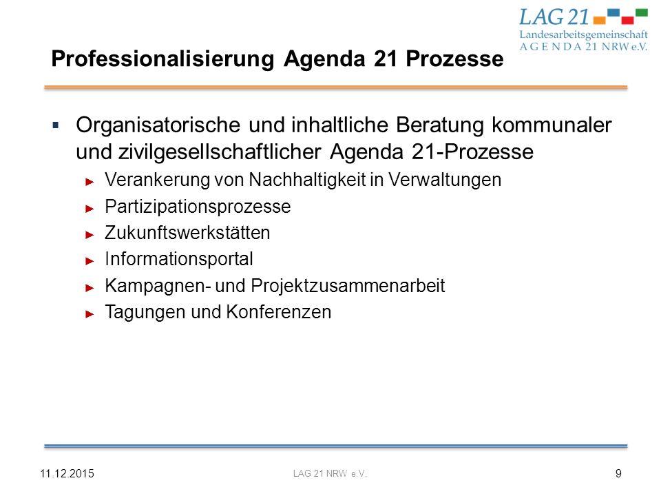 Professionalisierung Agenda 21 Prozesse