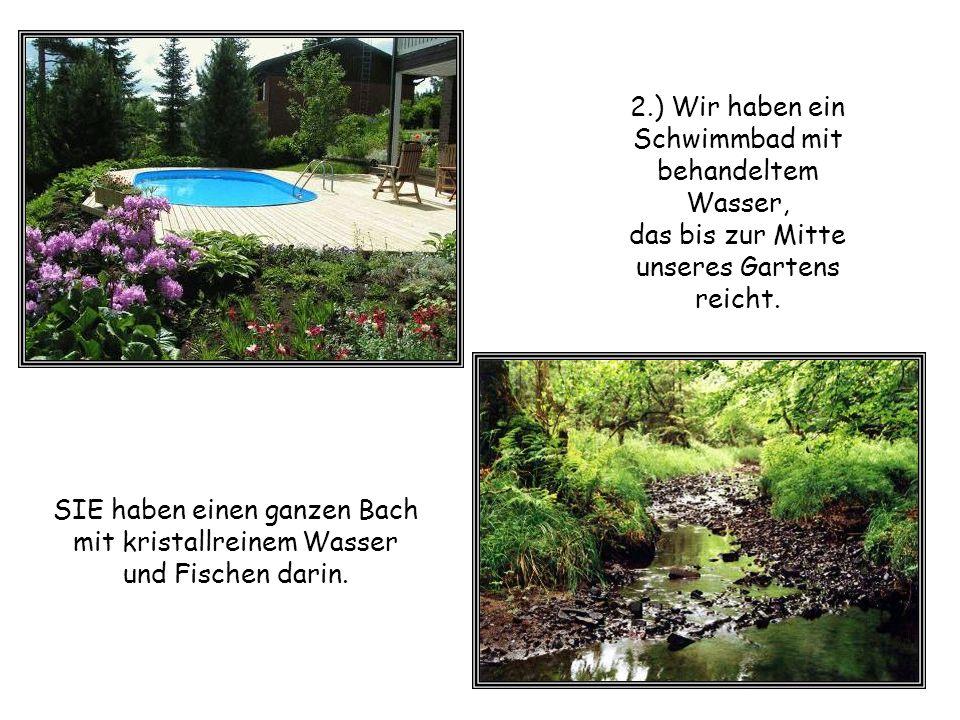2.) Wir haben ein Schwimmbad mit behandeltem Wasser,