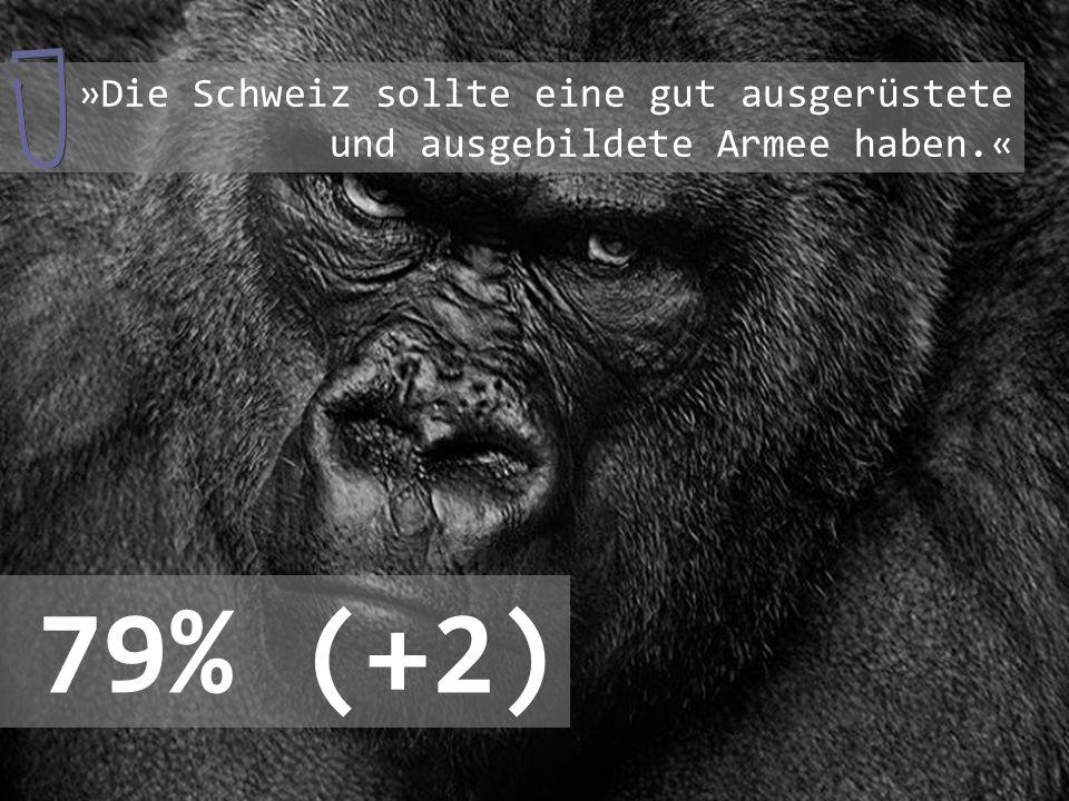 »Die Schweiz sollte eine gut ausgerüstete und ausgebildete Armee haben
