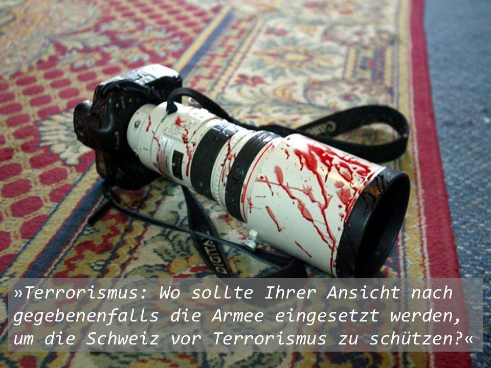 »Terrorismus: Wo sollte Ihrer Ansicht nach gegebenenfalls die Armee eingesetzt werden, um die Schweiz vor Terrorismus zu schützen «