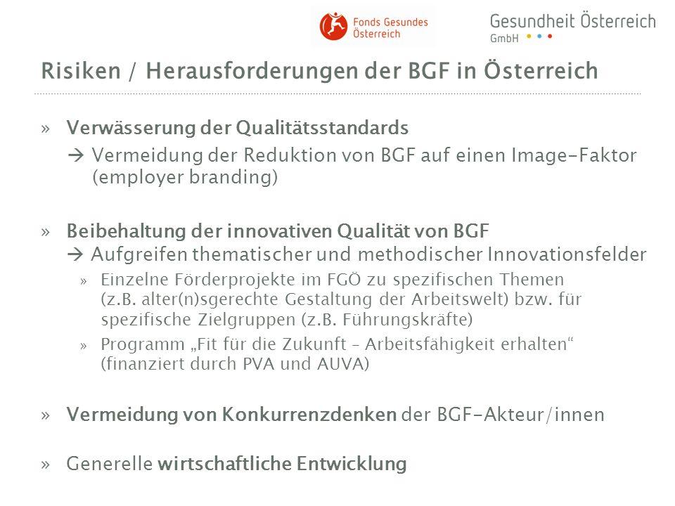 Risiken / Herausforderungen der BGF in Österreich
