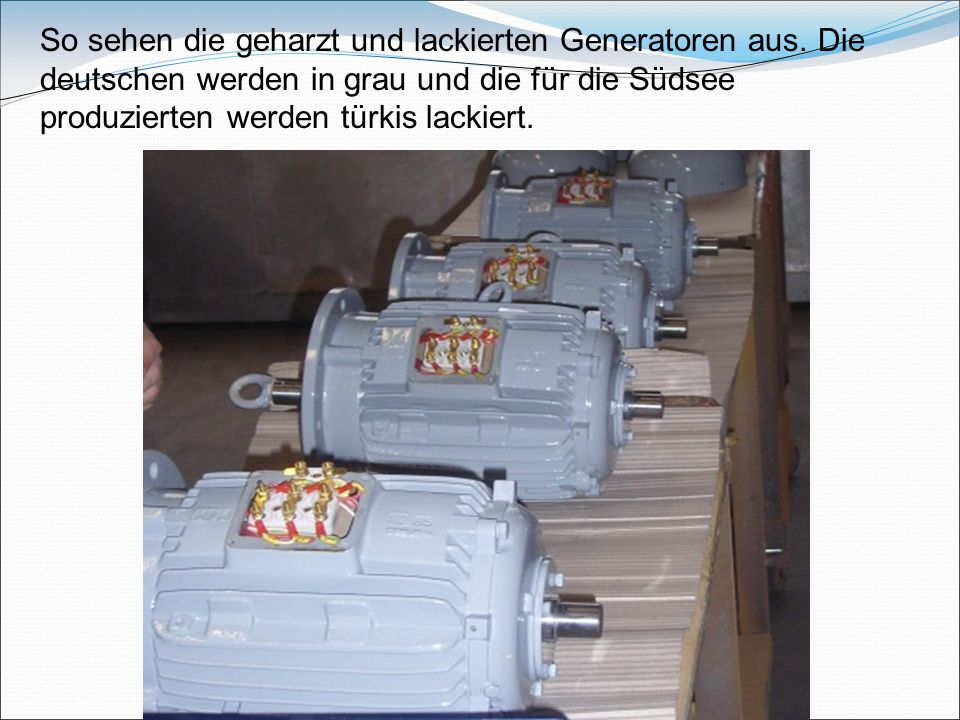 So sehen die geharzt und lackierten Generatoren aus