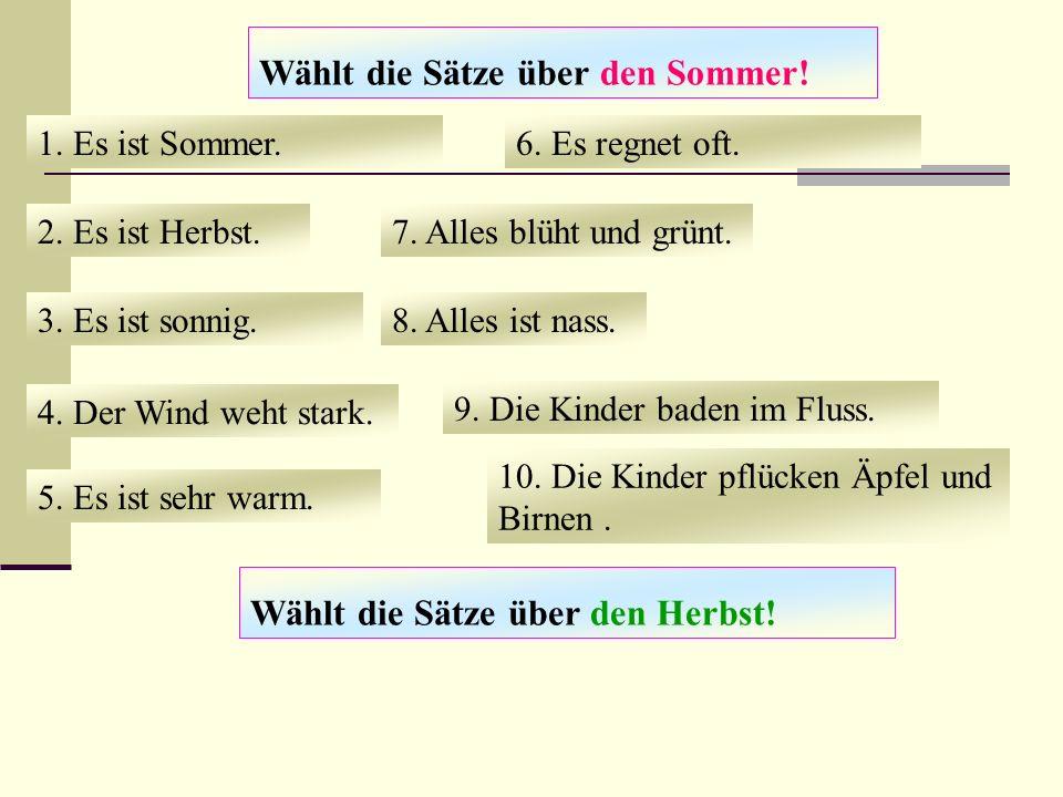 Wählt die Sätze über den Sommer!