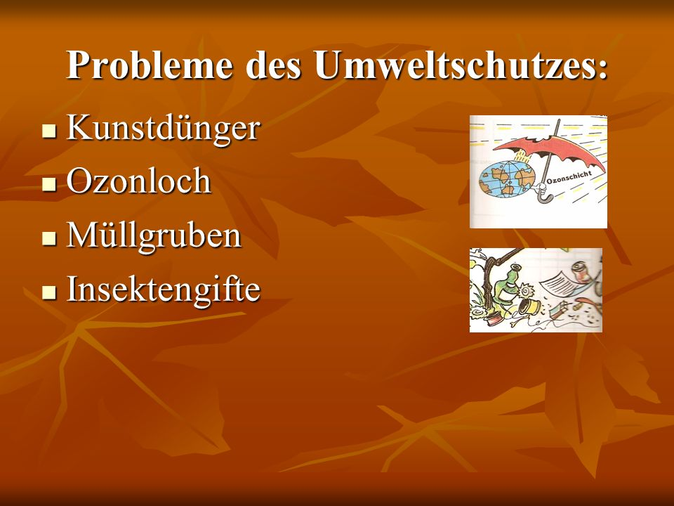Probleme des Umweltschutzes: