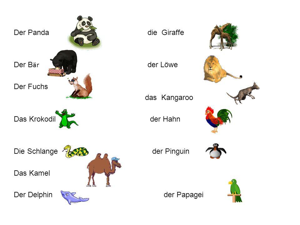 Der Panda die Giraffe Der Bär der Löwe.