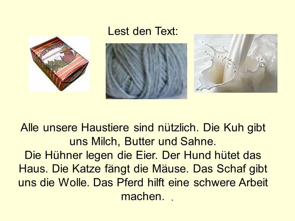 Lest den Text: Alle unsere Haustiere sind nutzlich. Die Kuh gibt uns Milch, Butter und Sahne.