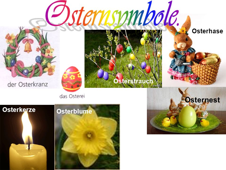 Osternsymbole. Osterhase Osterstrauch Osternest Osterkerze Osterblume