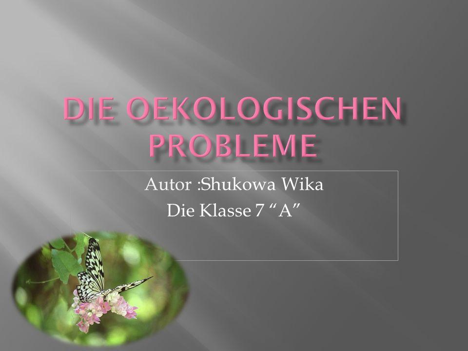 Die oekologischen probleme