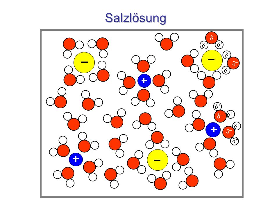 Salzlösung d– d+ d+ d–