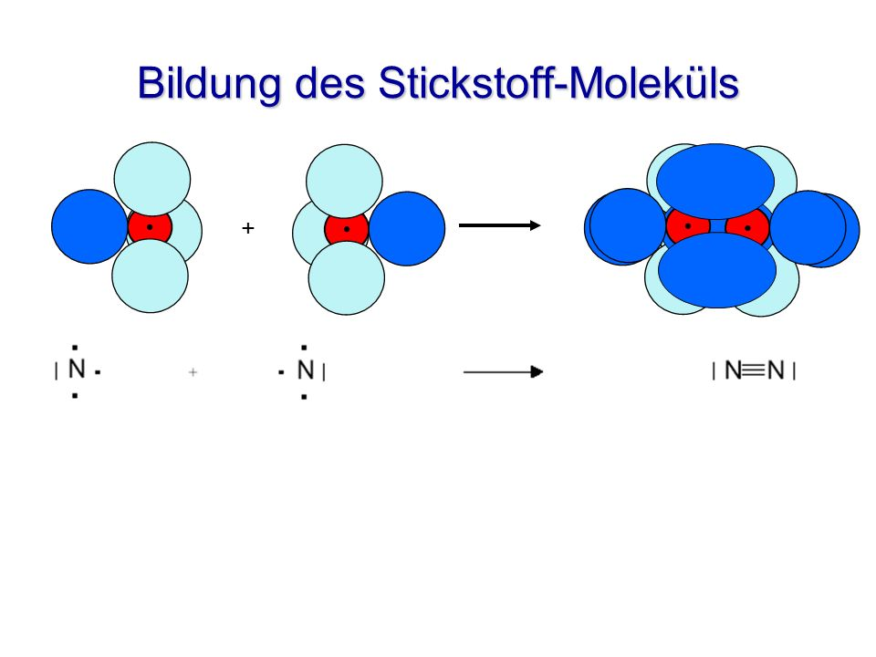 Bildung des Stickstoff-Moleküls