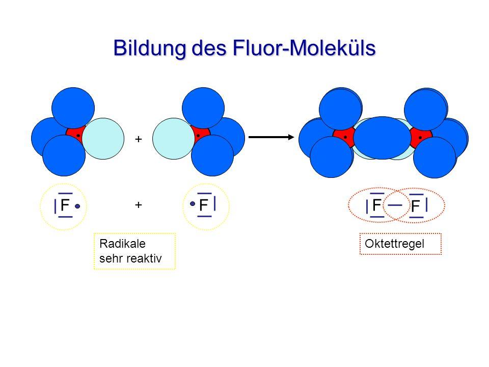 Bildung des Fluor-Moleküls