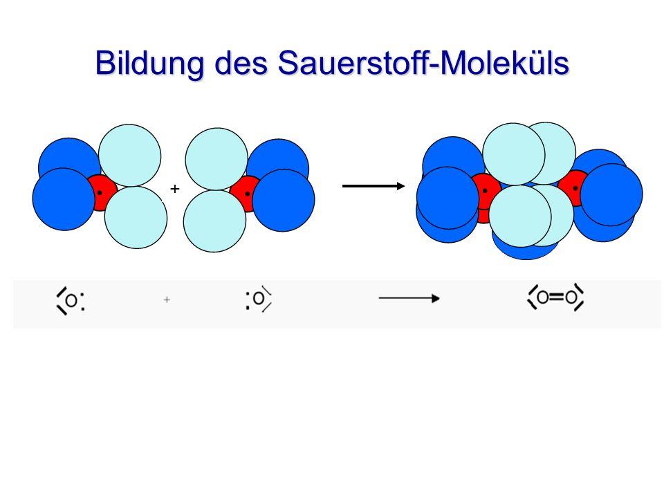 Bildung des Sauerstoff-Moleküls