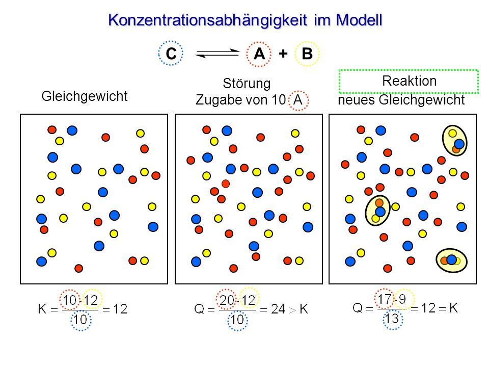Konzentrationsabhängigkeit im Modell