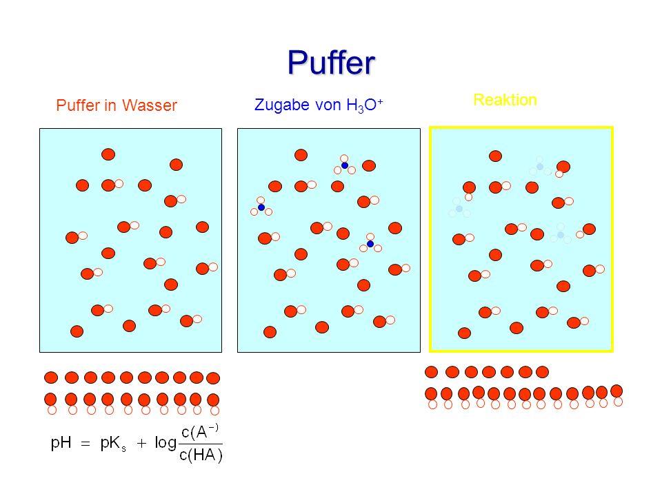 Puffer Reaktion Puffer in Wasser Zugabe von H3O+