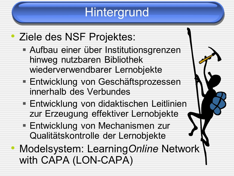 Hintergrund Ziele des NSF Projektes: