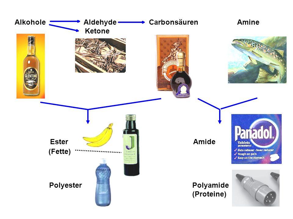 Alkohole Aldehyde Carbonsäuren Amine Ketone Ester Amide (Fette) Polyester Polyamide (Proteine)