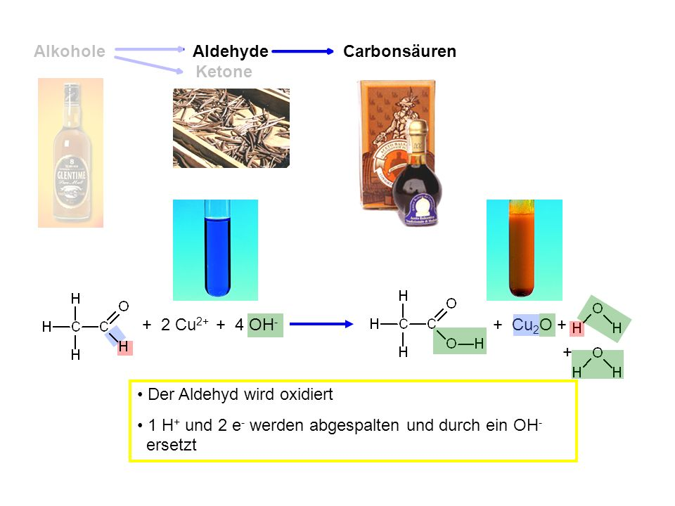 Alkohole Aldehyde. Carbonsäuren. Ketone. + 2 Cu2+ + 4 OH- + + + Cu2O. Der Aldehyd wird oxidiert.