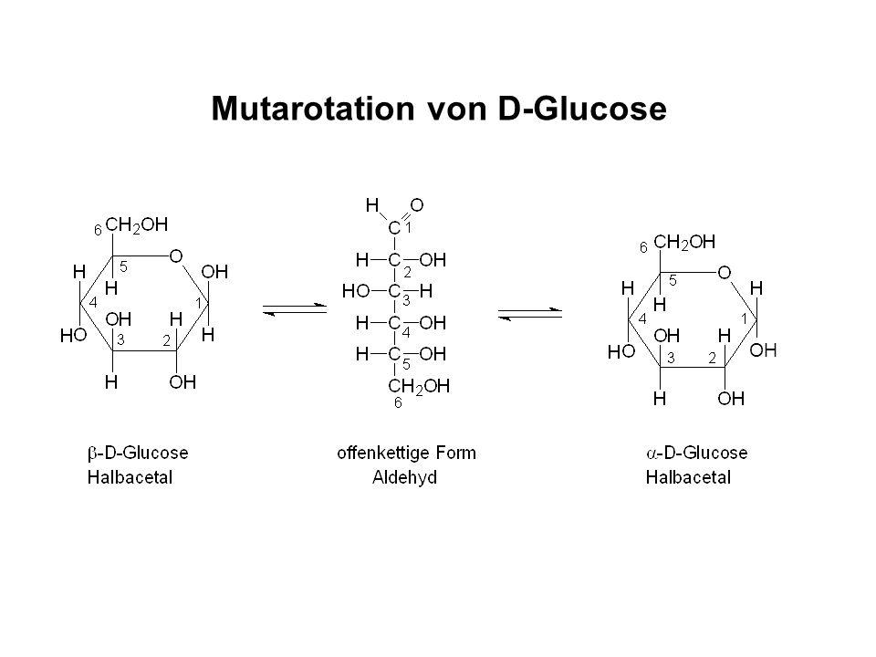 Mutarotation von D-Glucose
