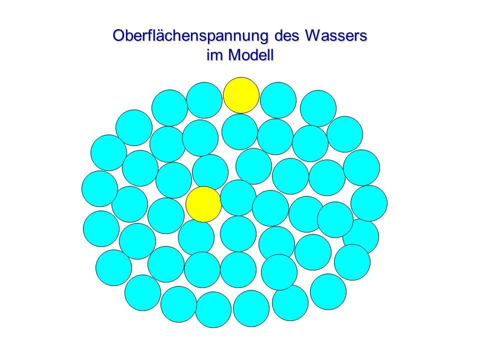 Oberflächenspannung des Wassers im Modell