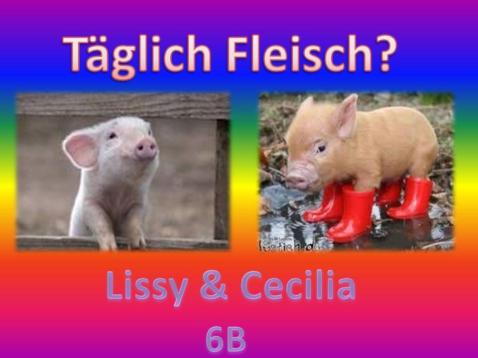 Täglich Fleisch Lissy & Cecilia 6B