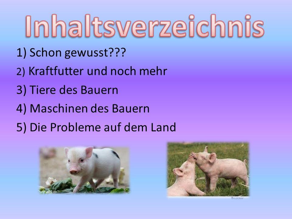 Inhaltsverzeichnis 1) Schon gewusst 3) Tiere des Bauern