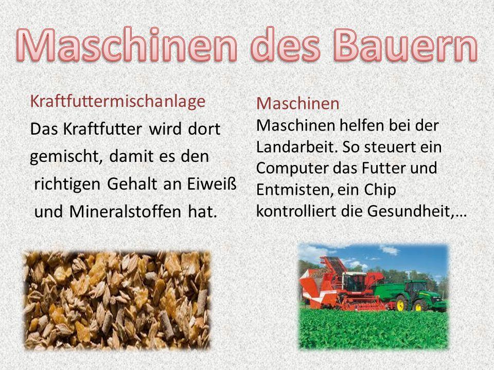 Maschinen des Bauern Kraftfuttermischanlage Das Kraftfutter wird dort gemischt, damit es den richtigen Gehalt an Eiweiß und Mineralstoffen hat.