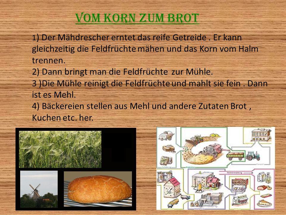 Vom Korn zum Brot 2) Dann bringt man die Feldfrüchte zur Mühle.