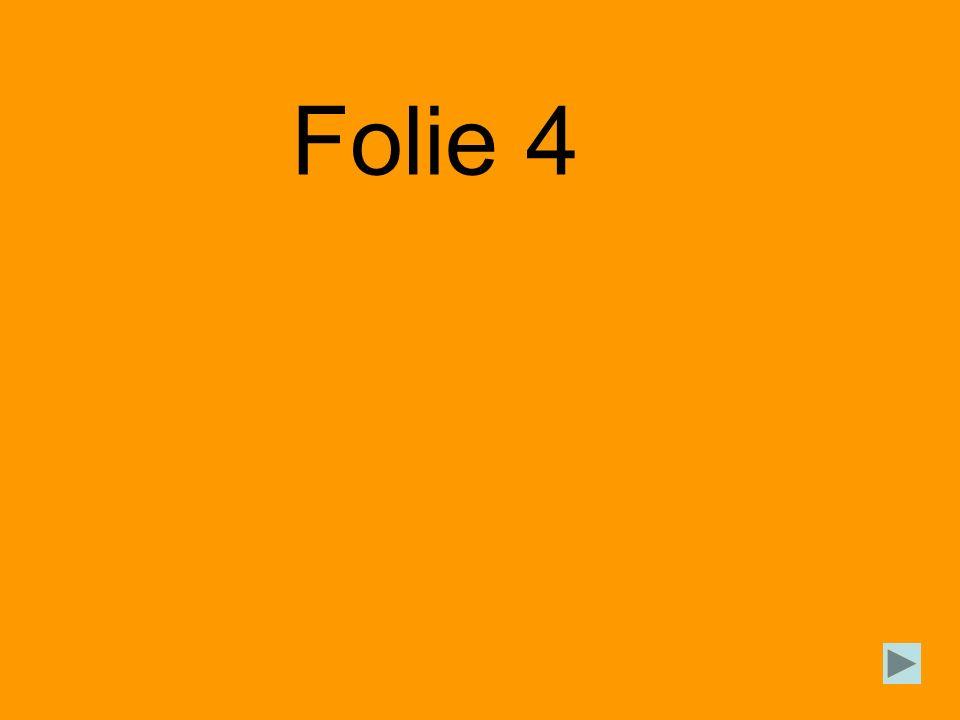 Folie 4