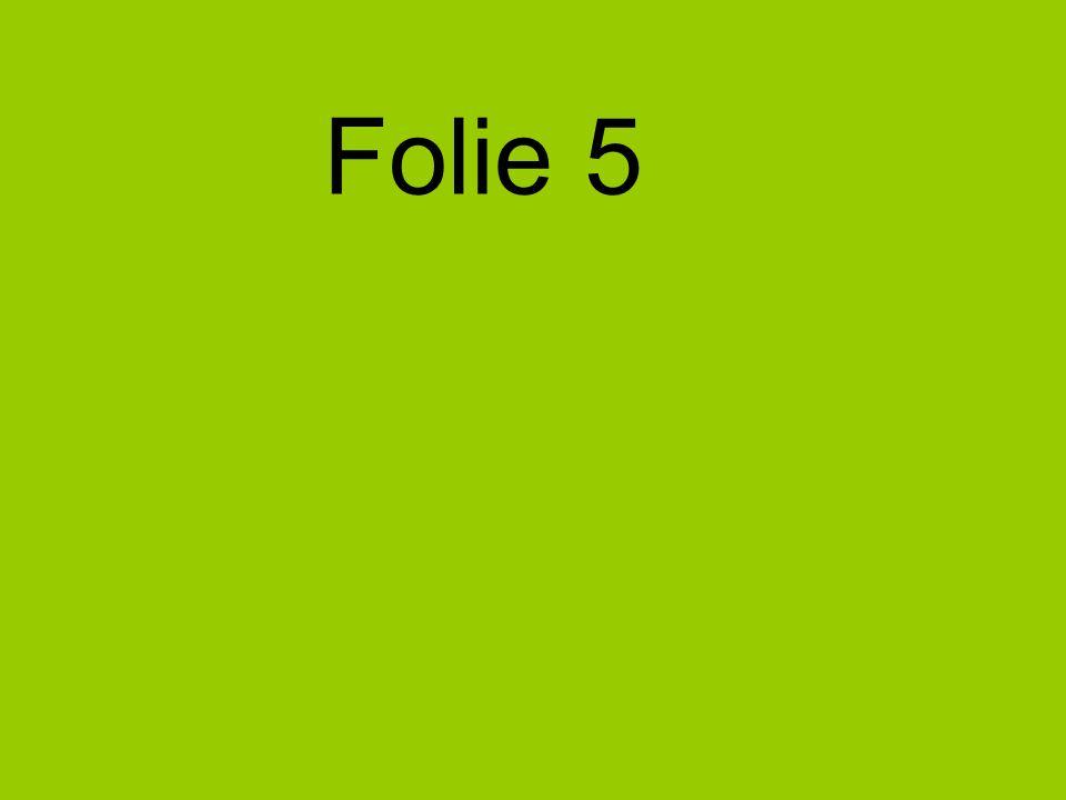 Folie 5