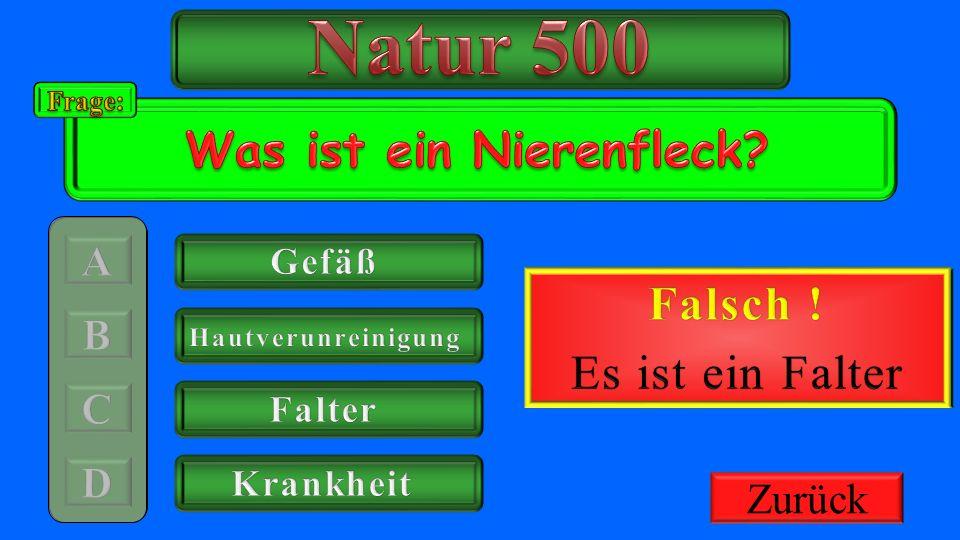 Natur 500 Richtig ! Was ist ein Nierenfleck Falsch !