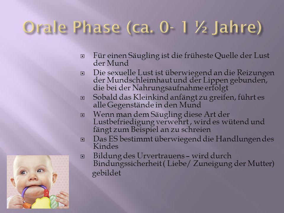Orale Phase (ca. 0- 1 ½ Jahre)
