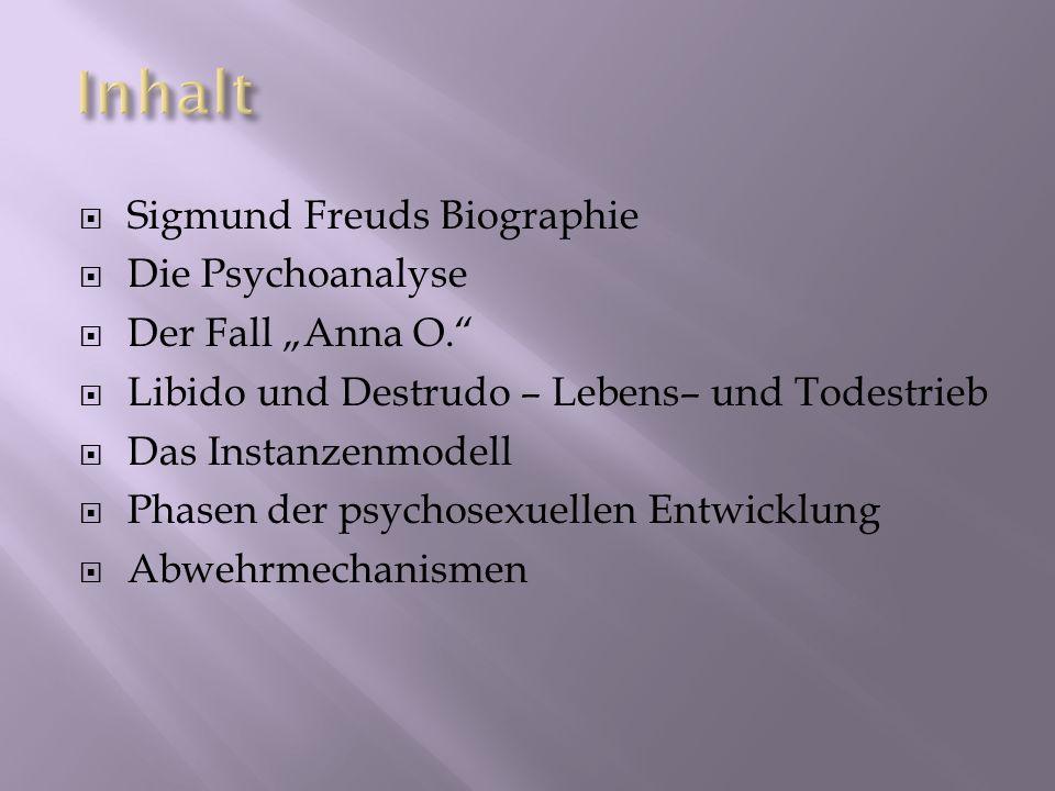 """Inhalt Sigmund Freuds Biographie Die Psychoanalyse Der Fall """"Anna O."""