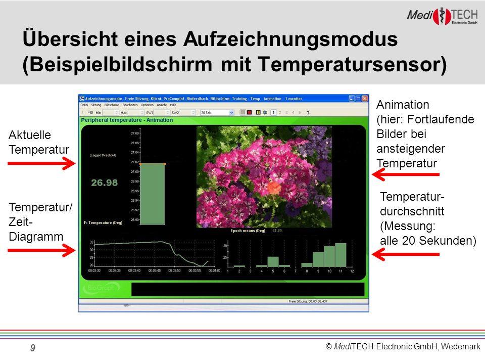 Übersicht eines Aufzeichnungsmodus (Beispielbildschirm mit Temperatursensor)