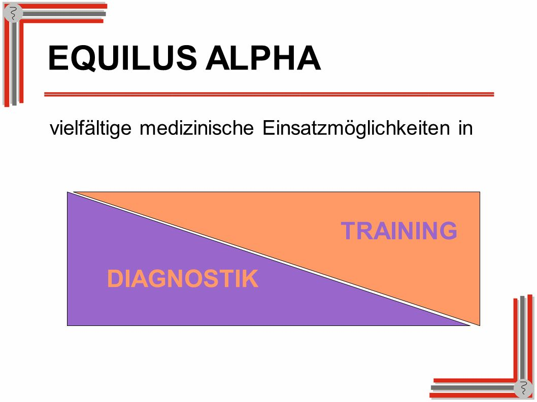 EQUILUS ALPHA TRAINING DIAGNOSTIK