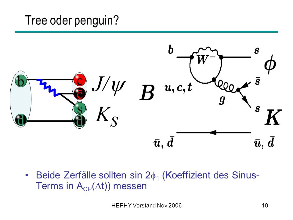 J/ KS b c s d Tree oder penguin