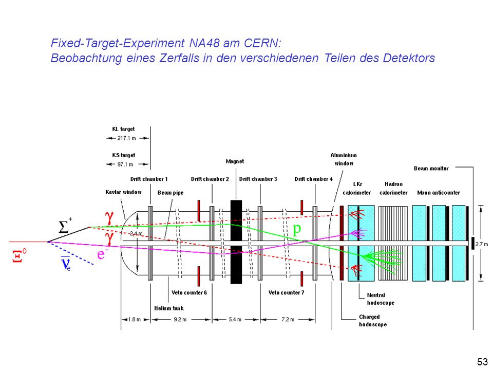 Fixed-Target-Experiment NA48 am CERN: