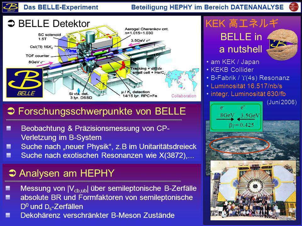  Forschungsschwerpunkte von BELLE