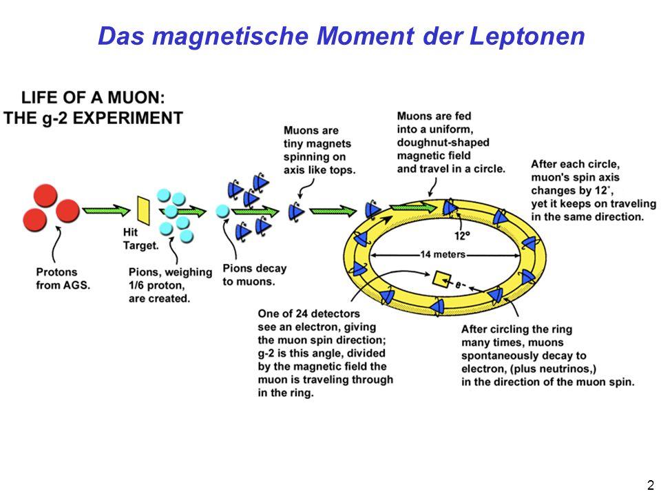 Das magnetische Moment der Leptonen