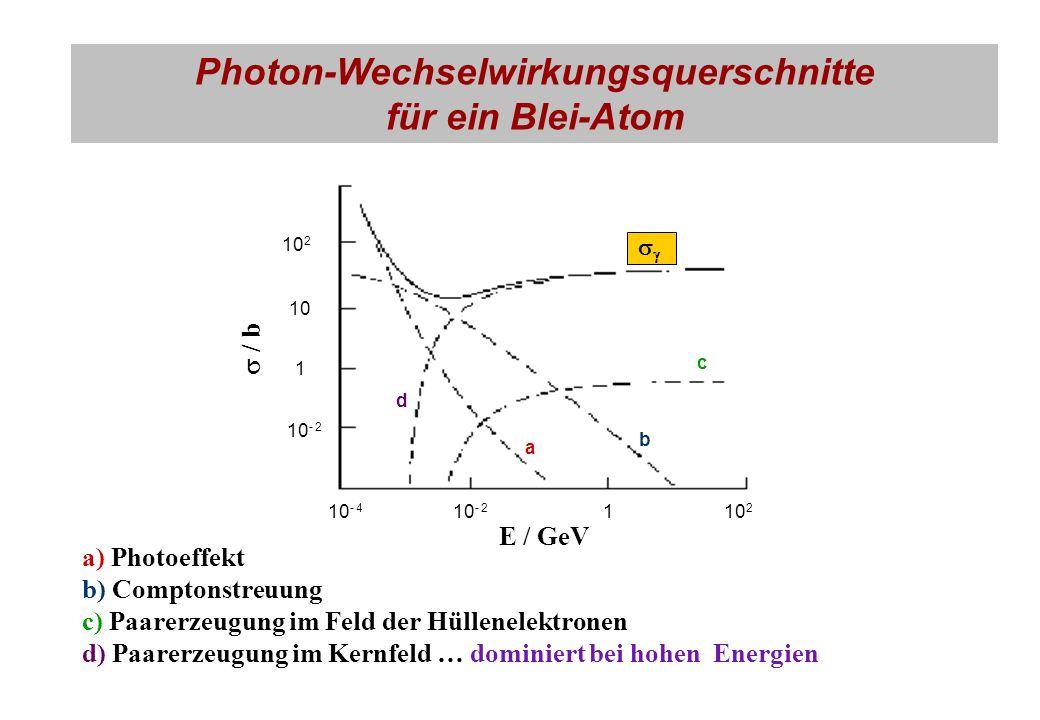 Photon-Wechselwirkungsquerschnitte