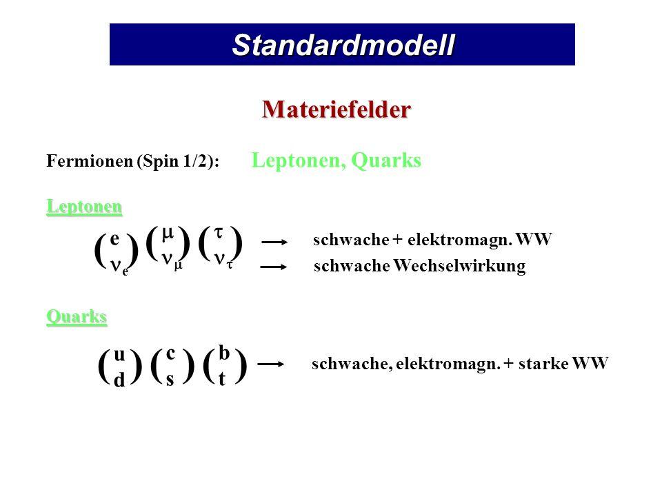 ( ) ( ) Standardmodell Materiefelder e ne m nm t nt u d c s b t