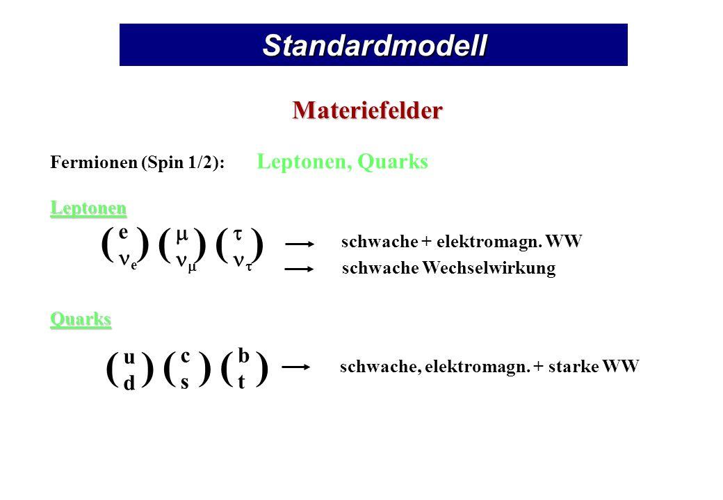 ( ) Standardmodell Materiefelder e ne m nm t nt u d c s b