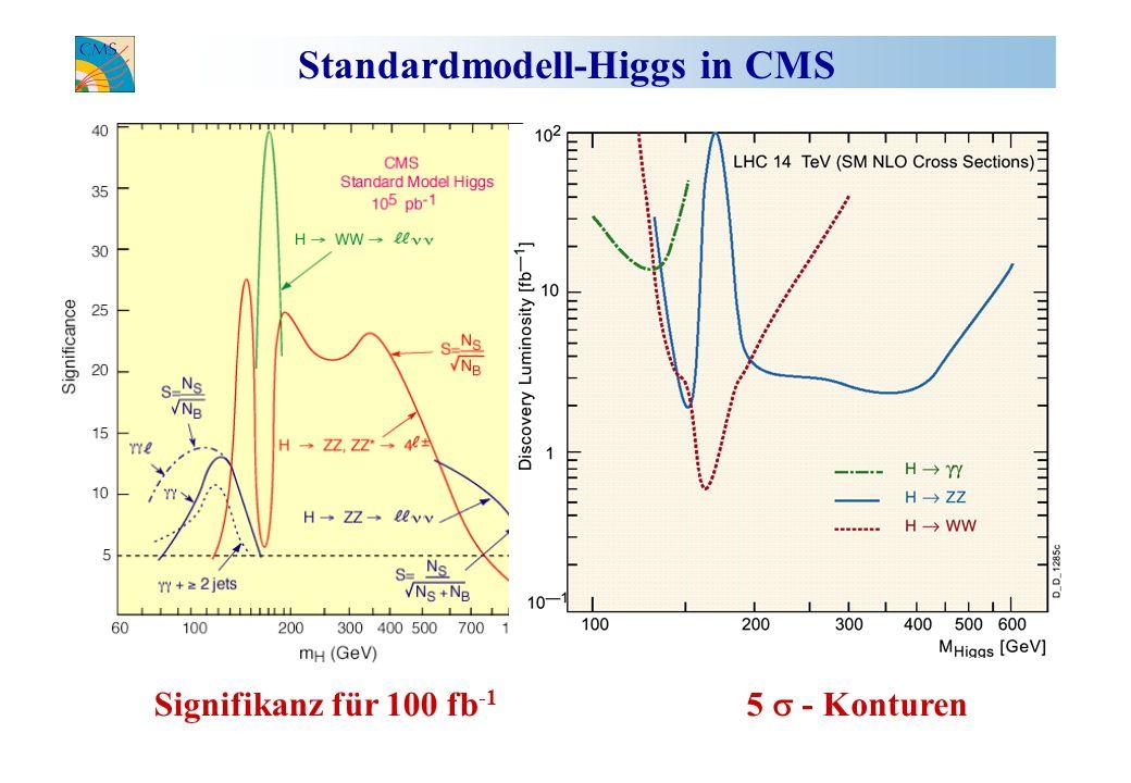 Standardmodell-Higgs in CMS