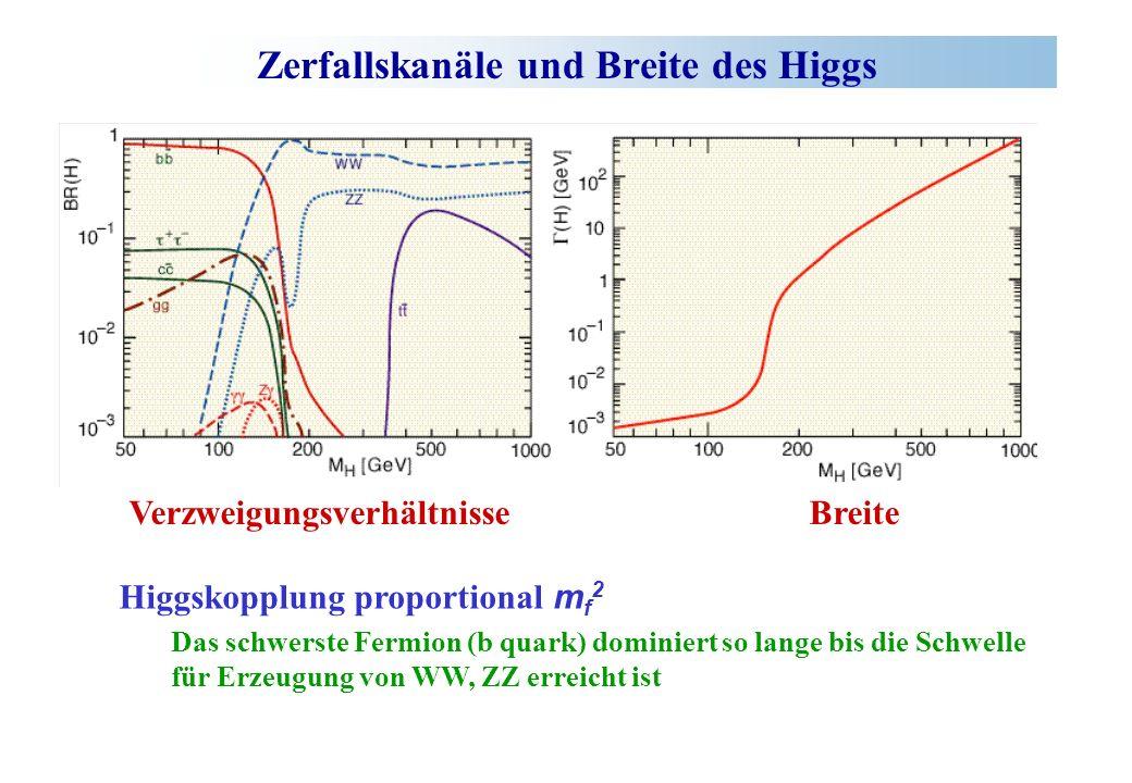 Zerfallskanäle und Breite des Higgs