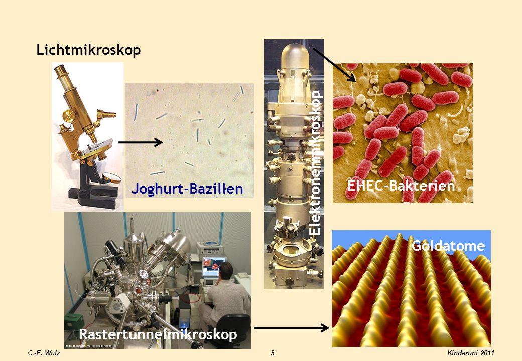 Rastertunnelmikroskop Goldatome