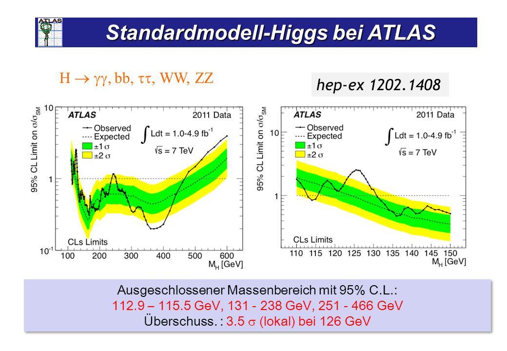 Standardmodell-Higgs bei CMS