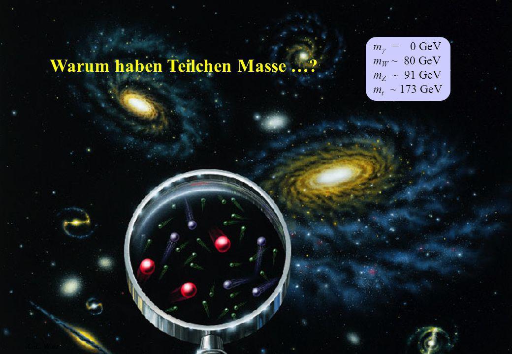 Warum haben Teilchen Masse …
