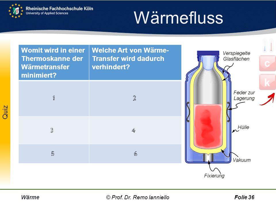 Wärmefluss Womit wird in einer Thermoskanne der Wärmetransfer minimiert Welche Art von Wärme-Transfer wird dadurch verhindert