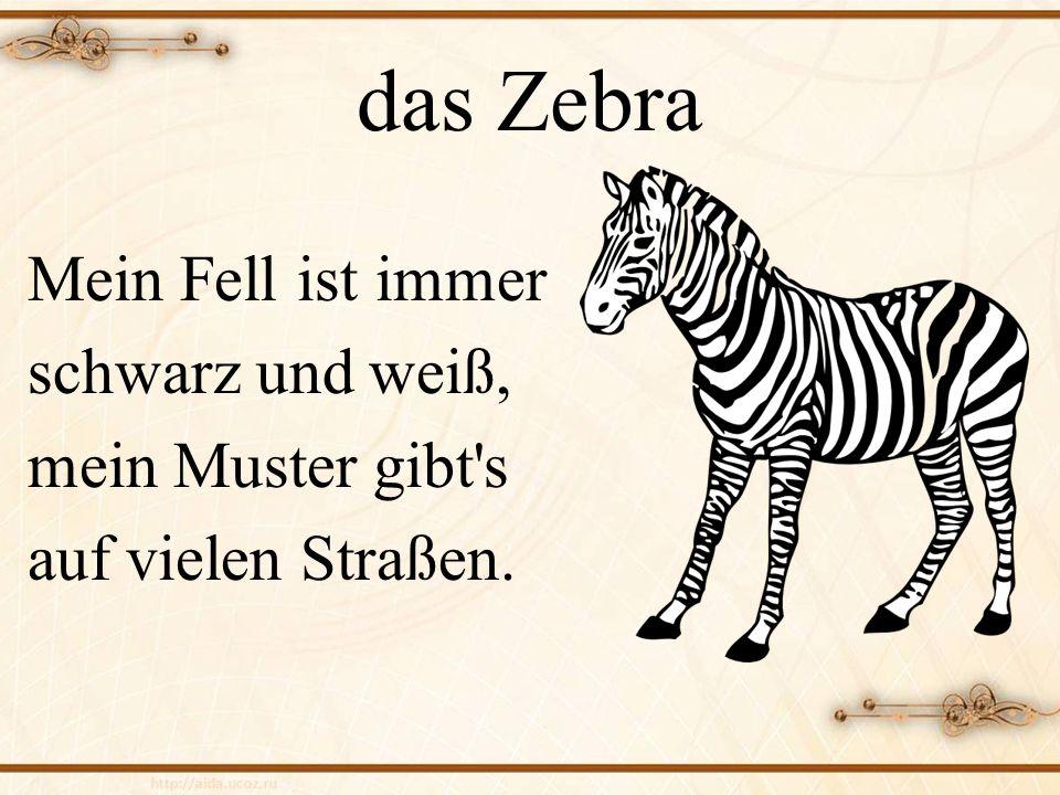 das Zebra Mein Fell ist immer schwarz und weiß, mein Muster gibt s auf vielen Straßen.