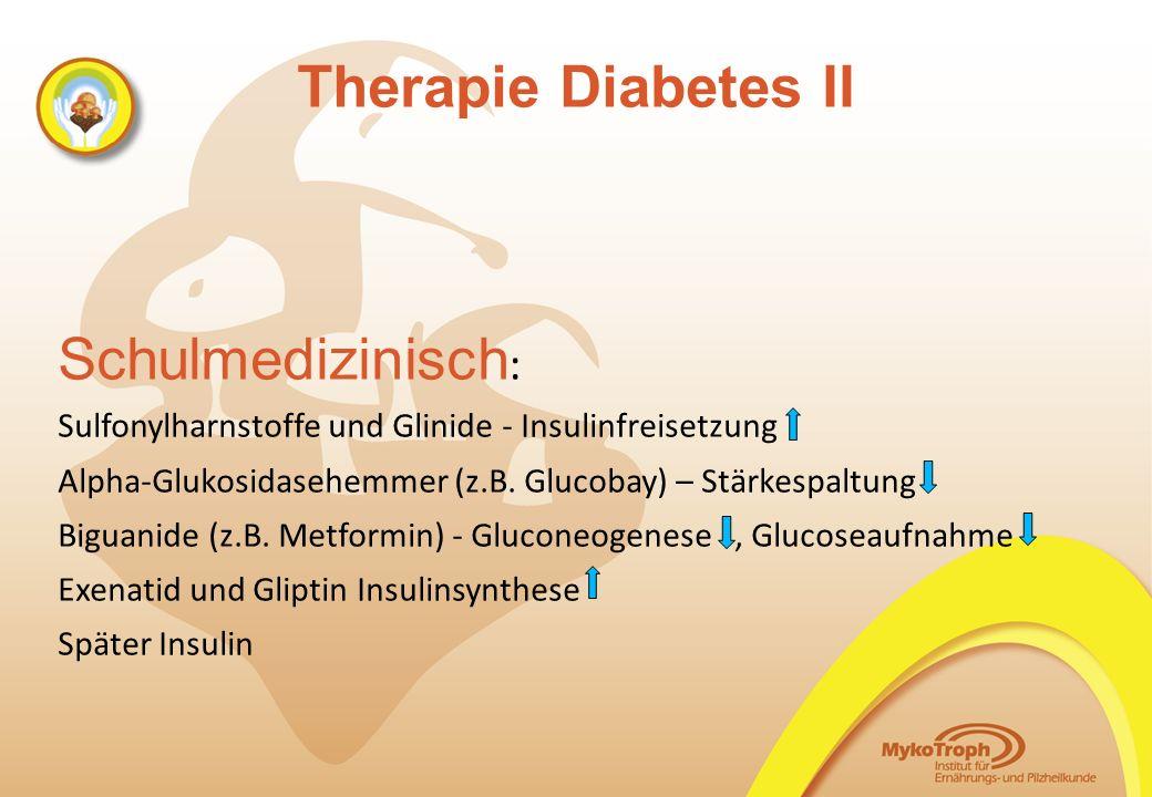Therapie Diabetes II Schulmedizinisch: